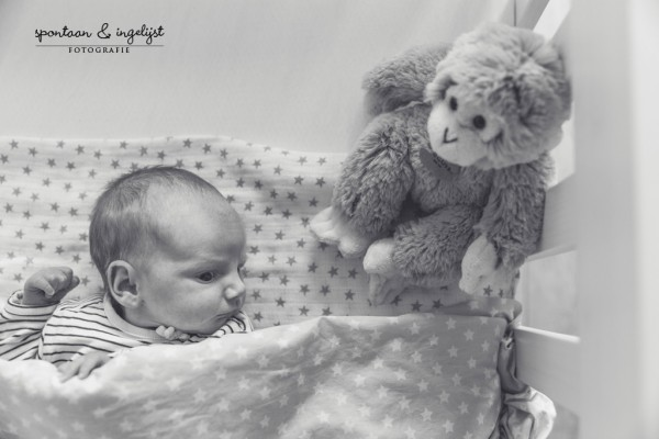 Newbornfotoshoot